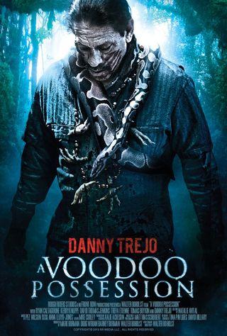 Voodoo4