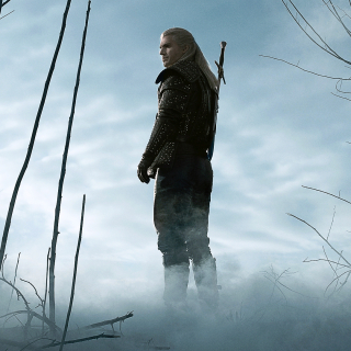 TheWitcher0110